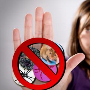 less pets living